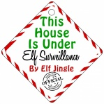 Personalised Elf Name This House Is Under Elf Surveillance Metal House Window Sign