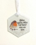 Robins Appear When Lost Loved Ones Are Near Glass Christmas Decoration