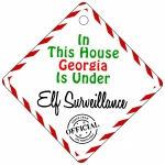 Personalised Child Name This House Is Under Elf Surveillance Metal House Window Sign